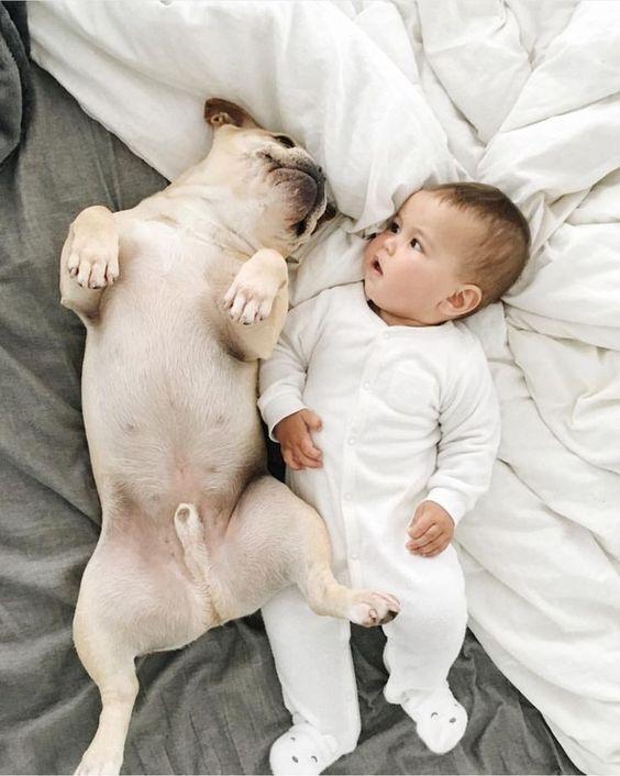 Дети и животные на фотографиях – редкие снимки, способные затронуть душу